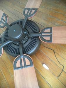 PRICE REDUCED Ceiling fan