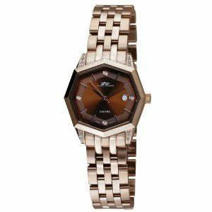 Daniel Steiger Sahara Cocoa watch (Fuquay-Varina, NC)