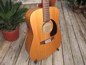 12 String Acoustic/Electric Guitar (Plantation)
