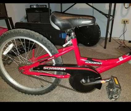 schwinn runabout trailer bike