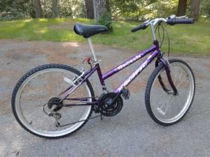 Purple Mountain Bike (Wayland Ma)