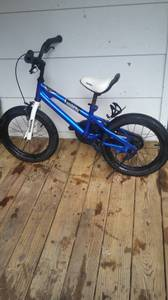 Boys Freestyle Bike (Cary)