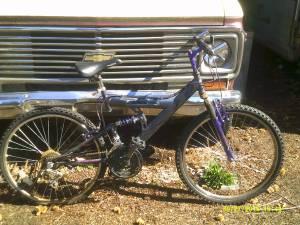 21 speed mountain bike (Carson)