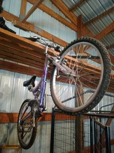 Girls mountain bike (Overton)