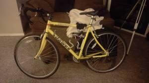 Dawes lightning road bike