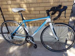 Trek road bike (Central)