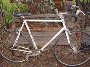 Superia 'Royal Regina' tall 60cm Belgium Road bike -- Good shape (NW OKC)