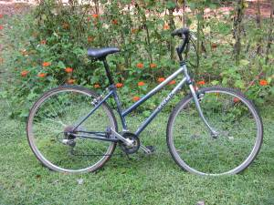 TREK Muktitrack 700 Road Bike (Fletcher)