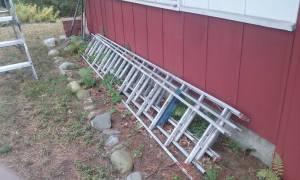 Aluminum Extendable Ladder (Wayland)