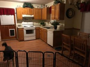 Female roommate wanted $350 (Woodruff)