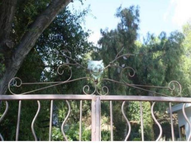 Room For Rent In Topanga Canyon, Ca