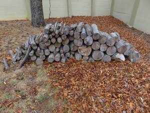 Seasoned Fire Wood Approx two Cords (Reston)
