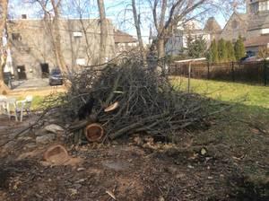 Fire wood (Waukesha)