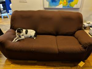 Free reclining couch with cover (My Lebanon)
