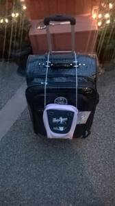 Free Luggage and Pink Kids Purse (Reno)