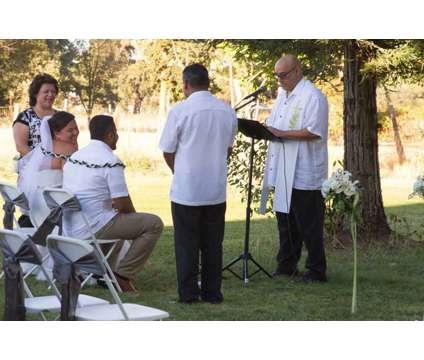 5 STAR-Bi-Lingual Wedding Officiant/Pastor