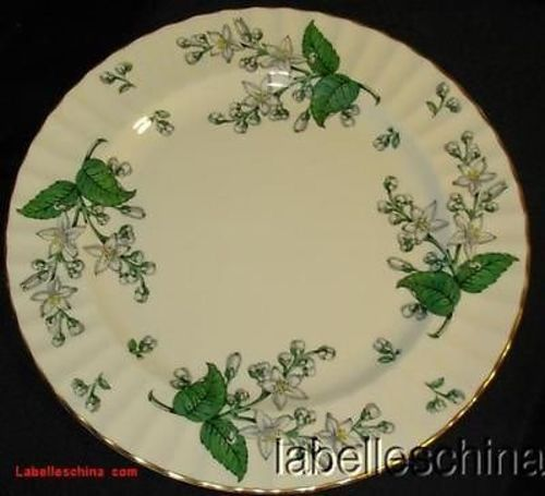 Royal Worcester Valencia 6.25