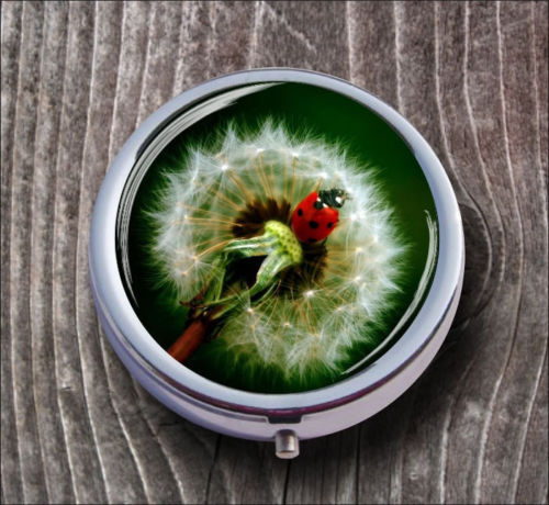 FLOWER DANDELION AND LADYBUG PILL BOX ROUND METAL -lvi6X