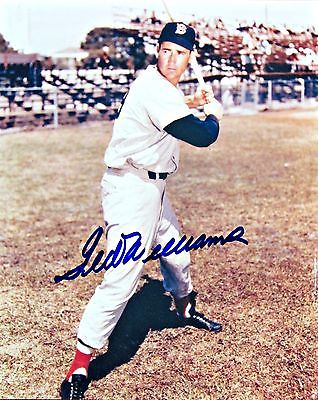 Ted Williams Autographed 8 x 10 color photo with LoA