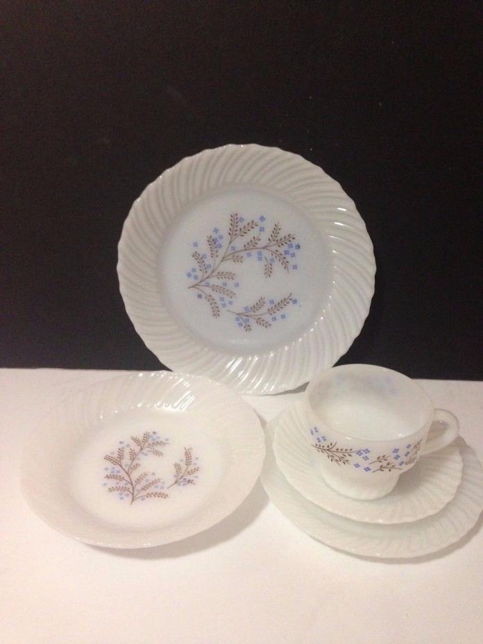 Termocrisa Opaque Place Setting Mexico Blue Flowers Milk Glass Vintage Plate Cup