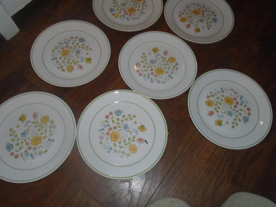 Corelle Plates - Meadow Collection - Corning Ware set of 7 Discontinued