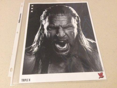 WWE Triple H 8 X 10 Photo
