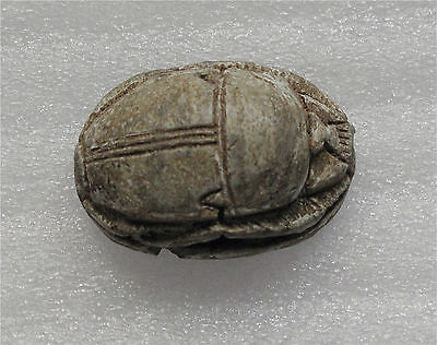 Egypt large steatite scarab XXII Dynasty 945-715 BC 3-rd intermediate period