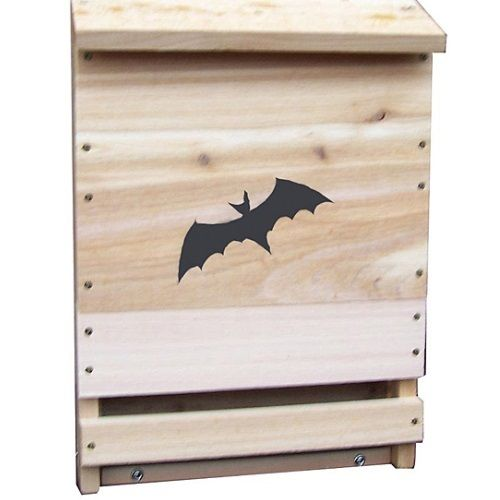 Bat House Kit Outdoor Stovall Wood Cedar Box Boxes Dwelling Home Houses Nest