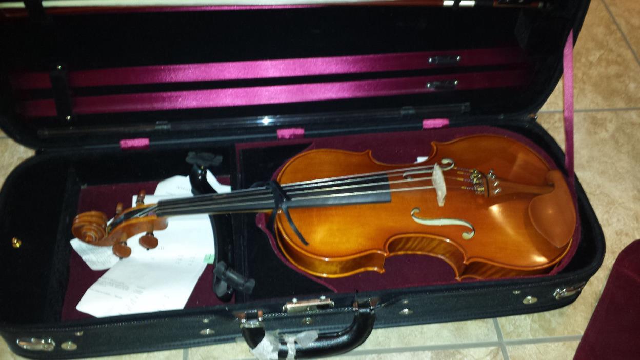 Eastman Viola VA200 16