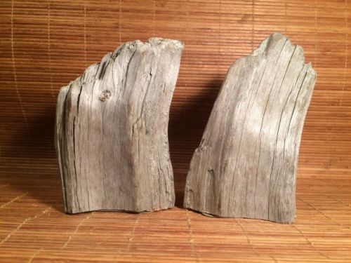 Unique Repurposed Recycled Driftwood Bookends Book Ends