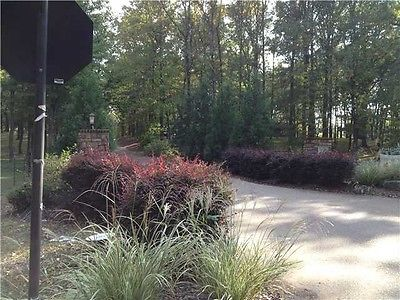 Beautiful Polk County Lot for Sale - #016067
