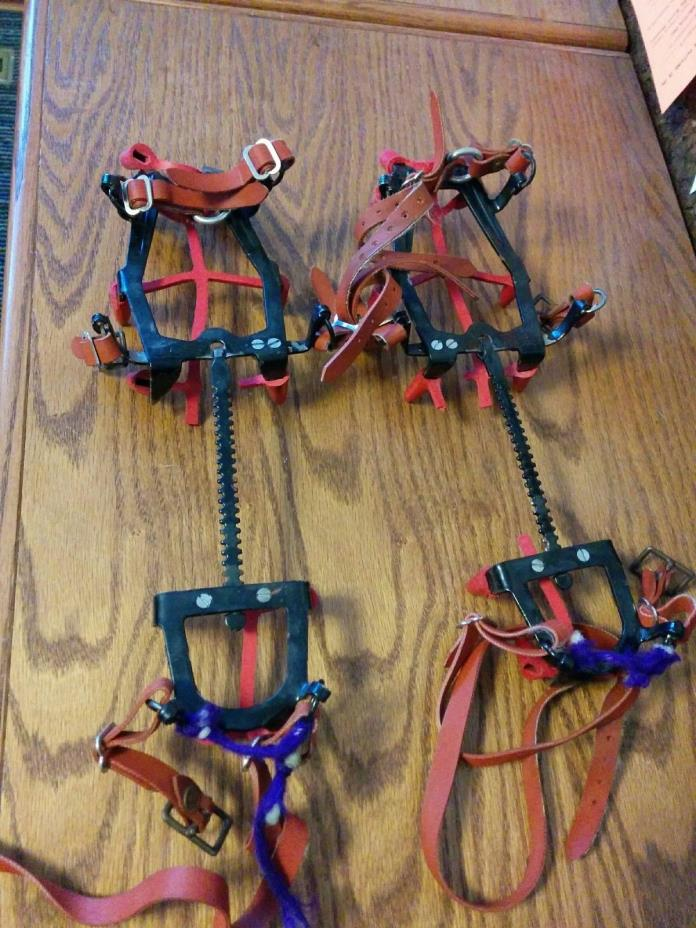 Crampons, Salewa DBP Hard Ice Classic, 12 point, large, mountaineering, w/straps