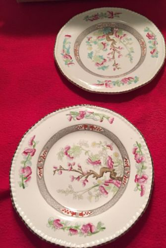 Burgess & Leigh Indian Tree 2 Salad Plates