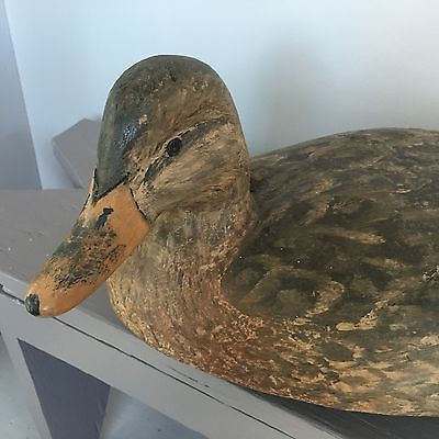 COLLECTIBLE OLD MALLARD HEN DECOY/HUNTING