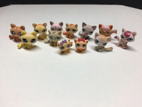Littlest Pet Shop Lot Of 12 Tabby And Angora Cats 1090 649 1207 224 1364 511 664