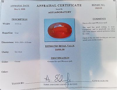 HUGE RARE Mexican Fire Opal  A MUST SEE