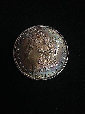 1886P Morgan Silver Dollar w/ Beautiful Rainbow Toning