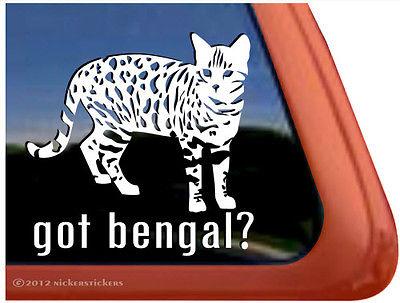 Got Bengal? | High Quality Vinyl Kitten Cat Window Decal