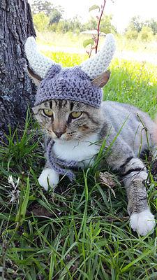 Handmade Knit Viking Warrior Braids Horn Helmet Halloween Cat Costume Hipster