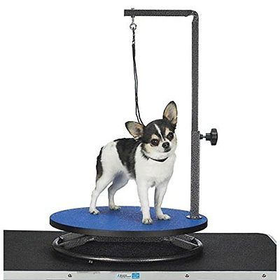 Healthy Pet Promotions Master Equipment Small Pet Grooming Table, Blue