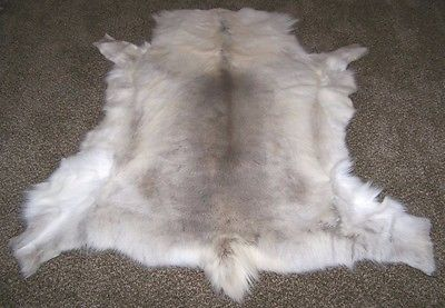 Tanned DEER HIDE White Fur Rug Throw Reindeer Caribou pelt Soft Taxidermy NEW