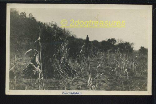 Rppc Corn Shocks Kansas Farm Field 1910 Agriculture Farming Old Postcard Real Ph
