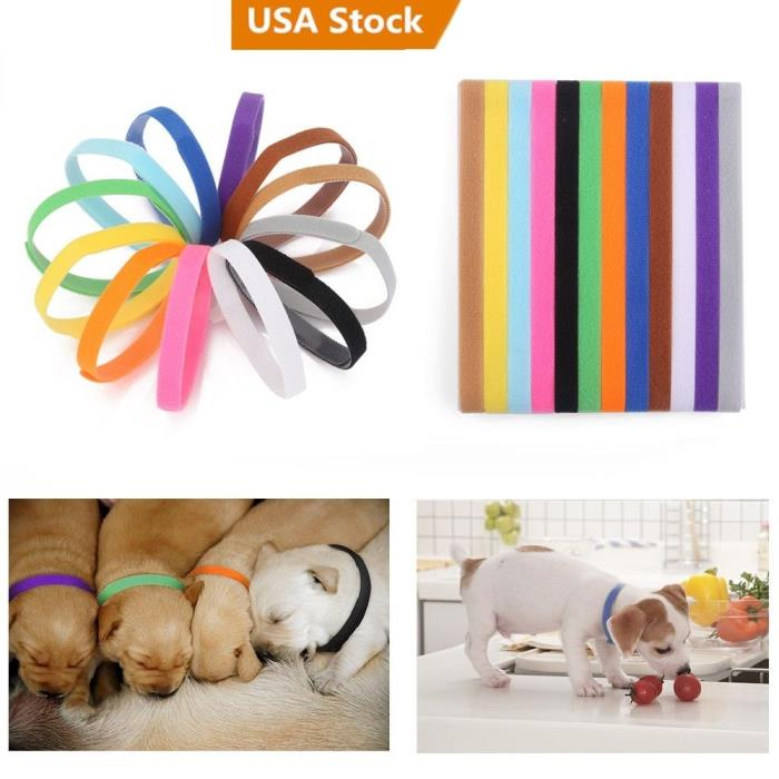 1/2/5/10 sets 12 Colors Adjustable Puppy Kitten Newborn ID Collars Pet Bands US