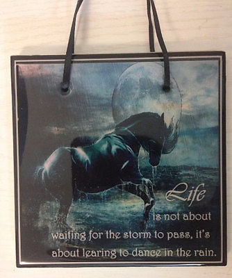 Horse Gift Inspirational Quote Western Decor Tile Plaque Sign Dance in Rain
