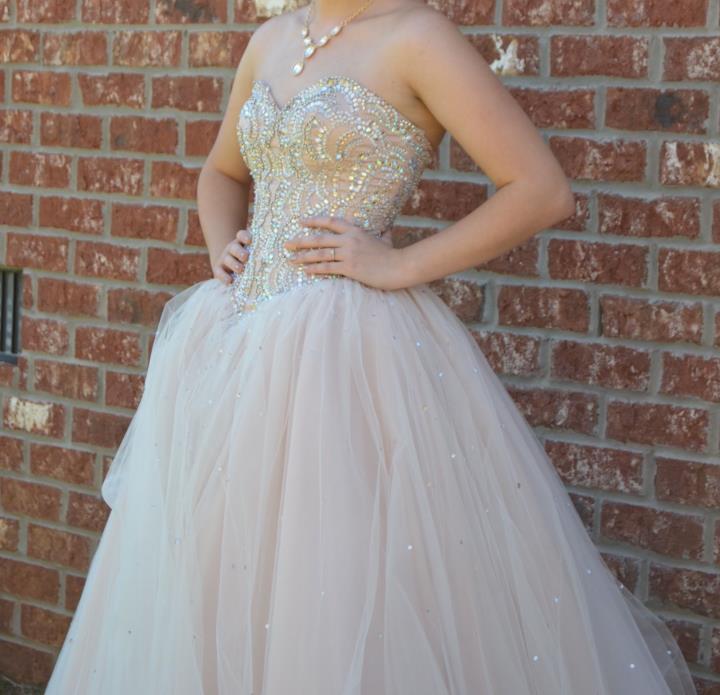 Champagne Princess Wedding Dress