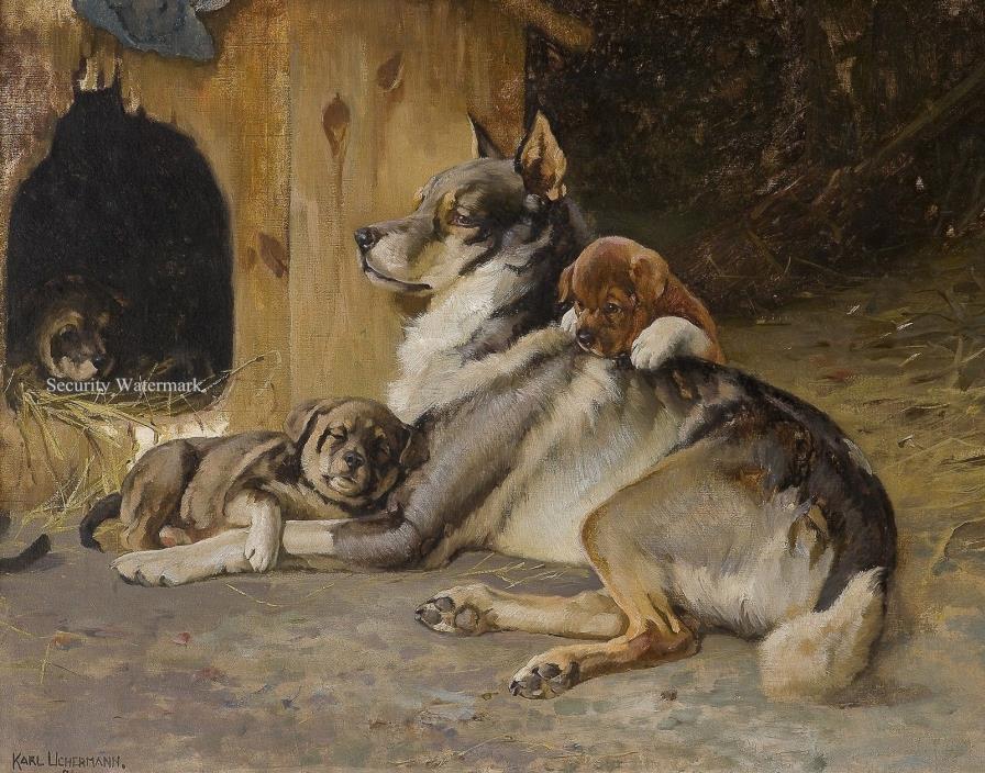 Elkhound with Puppies by Norwegian Artist Karl Uchermann. Canvas Art Print 11x14