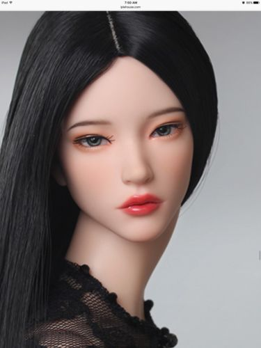 Fid Iplehouse Fashion Dolls Wanted In Mint Continue With Coa