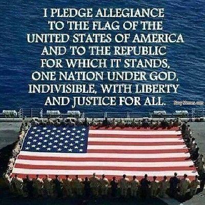 Pledge of Allegiance.com domain name - Brandable one word 1/2/3/4/5 letter