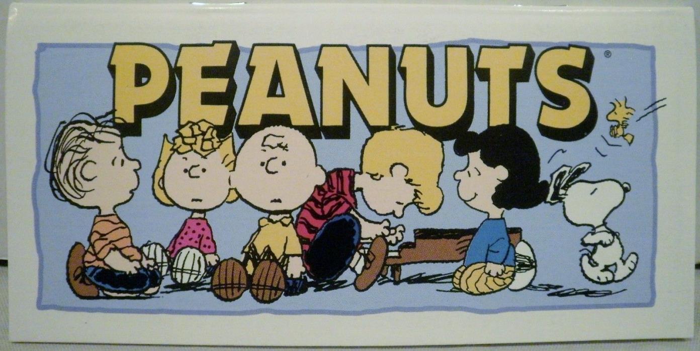 Peanuts Gang Checkbook Register