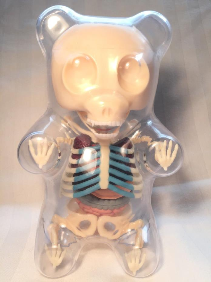 4D Master Gummi Bear Skeleton Anatomy Model Kit, Clear, 41 parts Free Shipping